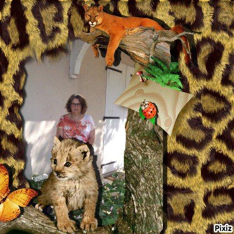 Nature Animaux Bébé léopard Puma Papillon Coccinelle