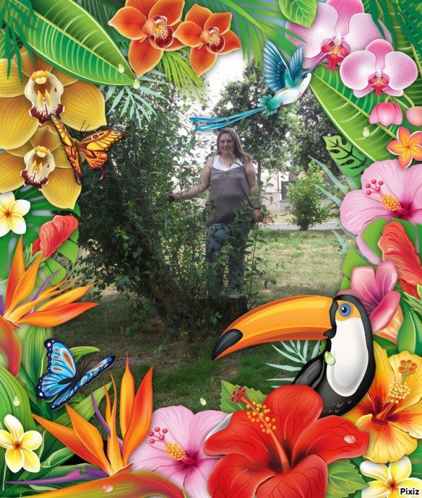 Tropiques Fleurs Papillon Perroquet