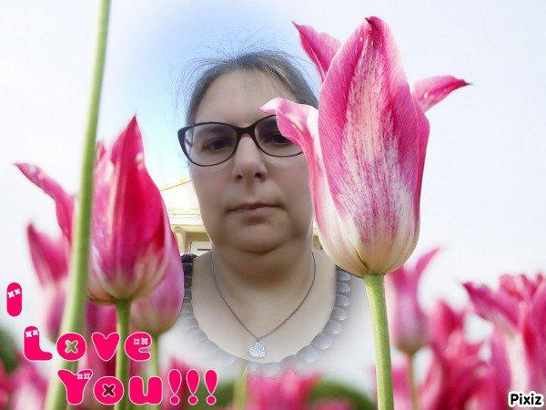 Tulipes roses I love you