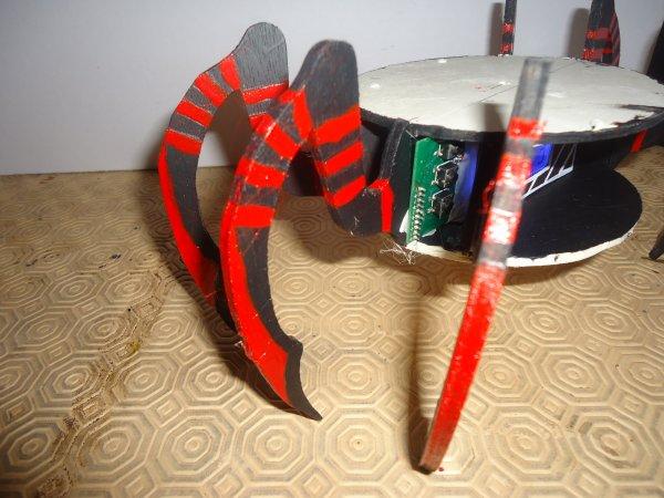 Araignée horloge de combat