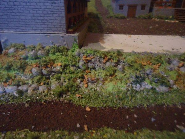 terrassement et plantation