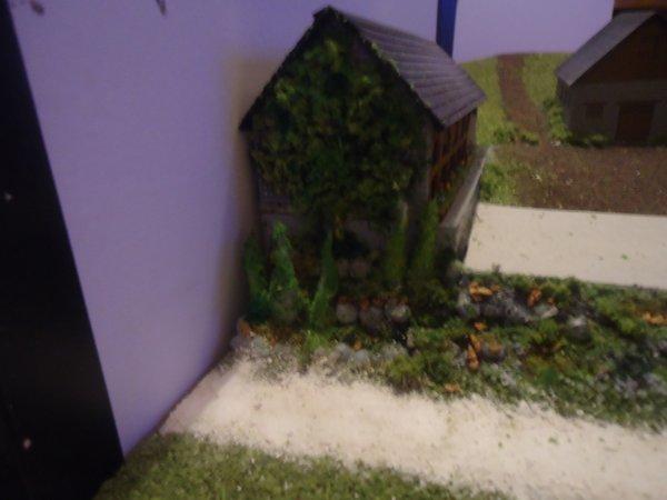 Végétation du mur de l'écurie
