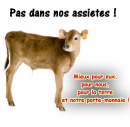 Photo de Devenons-vegetariens