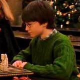 « Eux, ils ne savent pas que l'usage de la magie est interdit à la maison, dit Harry. Je crois que je vais bien m'amuser avec Dudley cet été... »