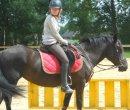 Photo de Me-simply-14-horses