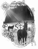 Photo de cheval-info