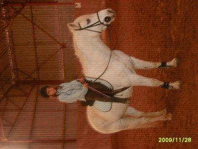 Galerie photos à cheval
