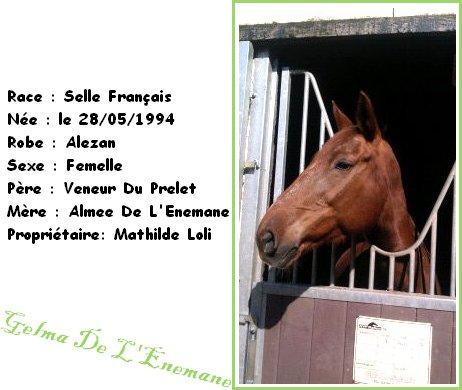 Gelma De L'Enemane