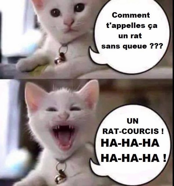 Une petite blague :)