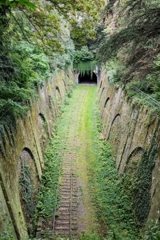 THE OVERGROWN RAILWAY IN PARIS
