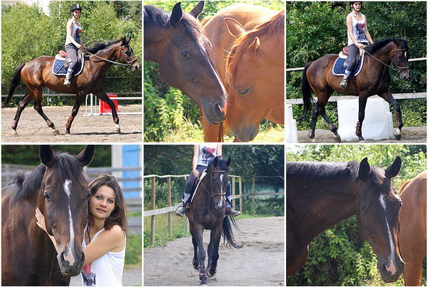 *08.07.2012 Cours particulier-Séance de dressage *