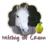 Ivitchig-de-Crann