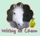 Photo de Ivitchig-de-Crann