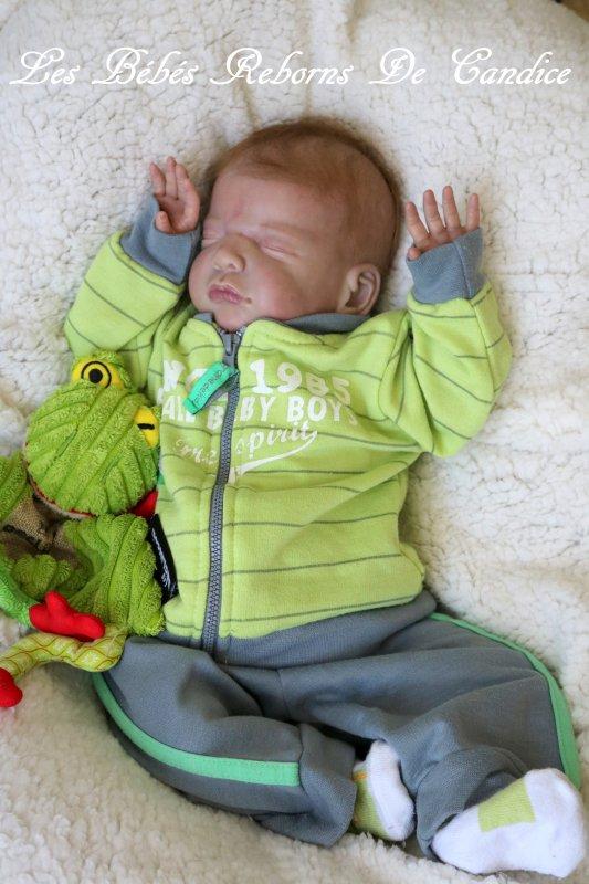 Sébastien (adopté par Sophie)