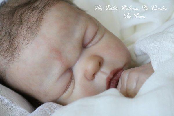 Bébé en cours de création...