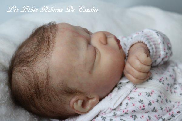 Eleonore (adoptée par Lilou)