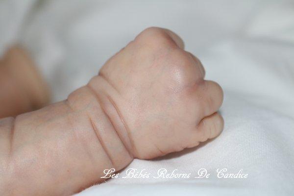 Bébé en cours de réalisation