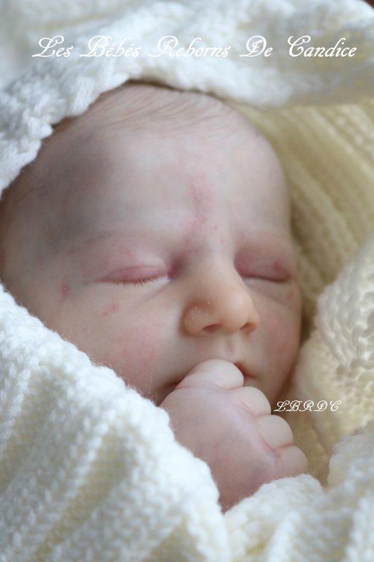 Bébé en cours de réalisation (non disponible)