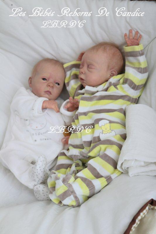 Paul et Lola, petits prématurés (adoptés)