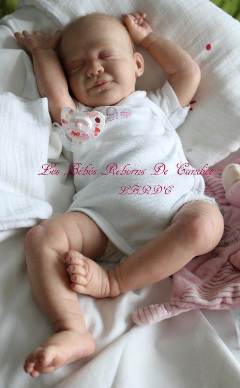 Louna (disponible à l'adoption )