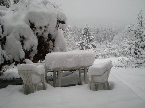 neige du 1er decembre 2010