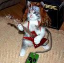 LE chat rockeur