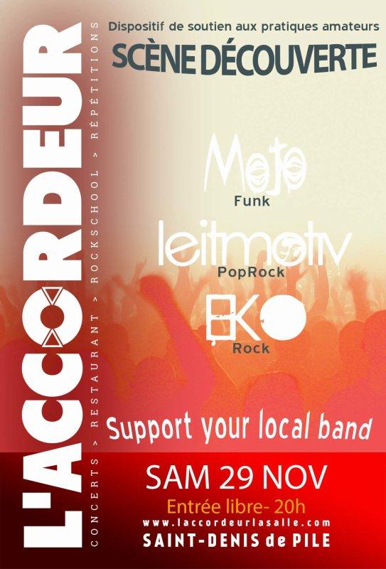 Prochain concert, le samedi 29 novembre à l'Accordeur, Saint-Denis-de-Pile!