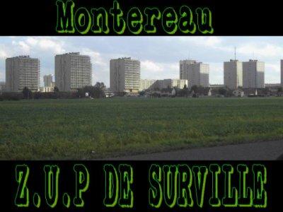Montereau°°°°77130                  Z.U.P de Surville
