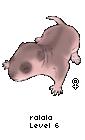□▪  SKYR0CK PRESENTE :: PiiX-A-RATS  ▫□