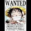 One-Piece-du08