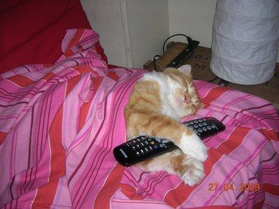 J'aime bien m'endormir devant la TV et vous ??