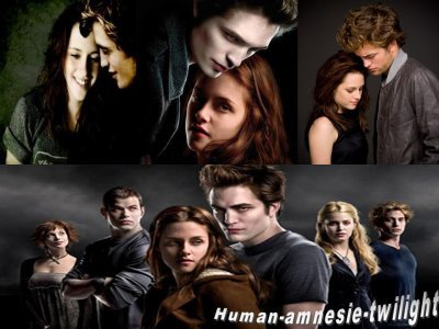 human-amnesie-twilight