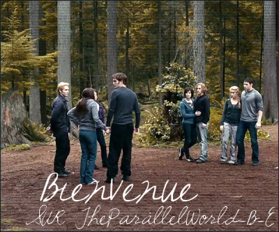 theparallelworld-b-e