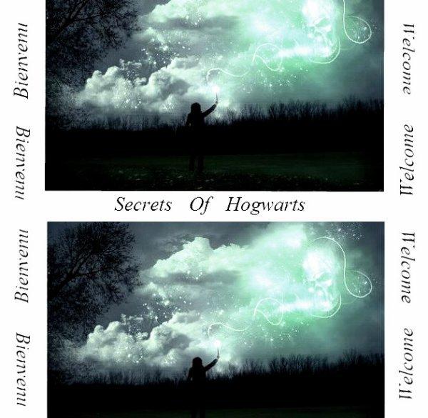RPG 13  : Secrets Of Hogwarts
