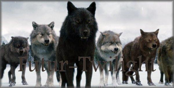 RPG 17 : Futur-Twilight