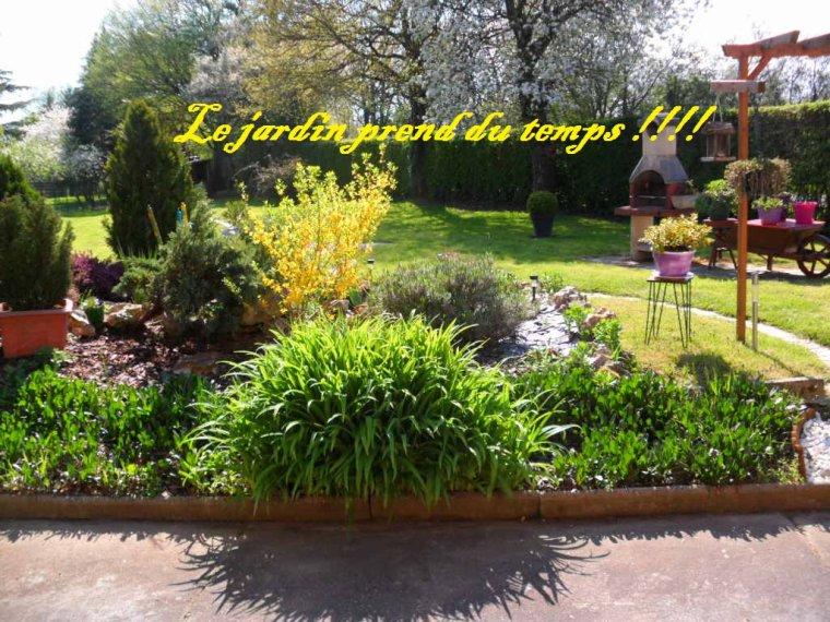Quand je ne suis pas sur le blog ... Je suis dans le jardin !!!!!