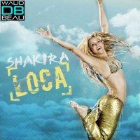 Shakira /  Loca 2011 (Alessandro Vinai Bootleg Remix) (2011)