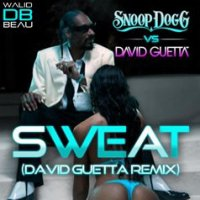 Snoop Dogg Vs David Guetta / Sweat (David Guetta Remix) (2011)