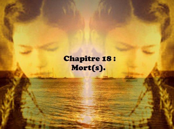 Tome 2 : Dix-huitième chapitre : Mort(s).