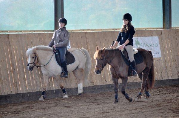 L'équitation est plus qu'une passion....