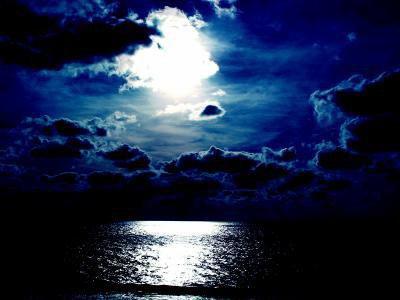 Dans un bois éclairé par la lune...