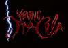 Young Dracula :