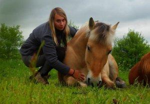 Marcher à côté de son cheval, ça n'a l'air de rien, mais ce n'est pas donné d'emblée