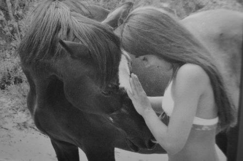 les chevaux ♥