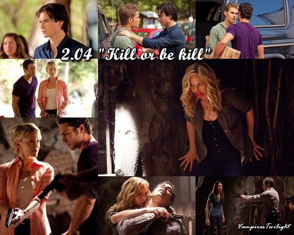 """Elena va decouvrir pourquoi elle ressemble a Katherine""- Kevin Williamson"