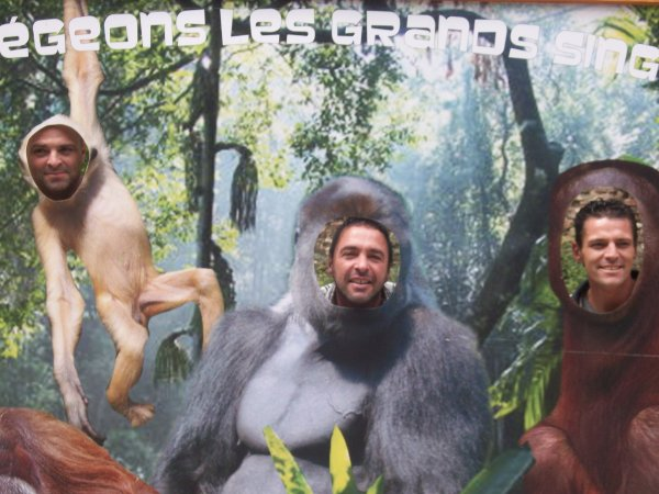 apres midi au zoo de lille