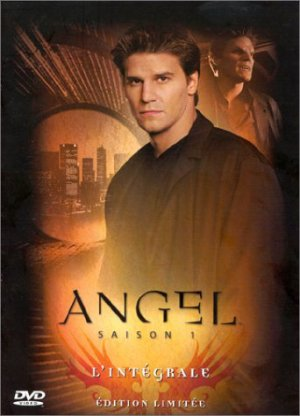 Angel : Saison 1