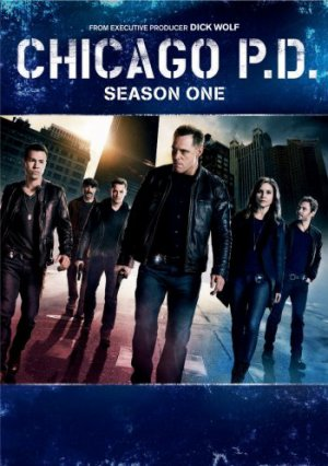 Chicago Police Departement : Saison 1
