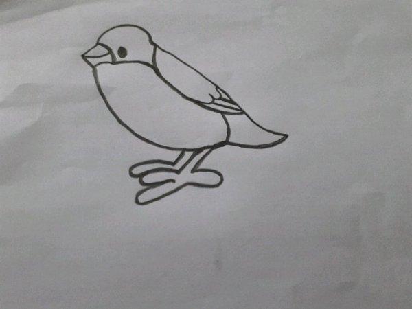 Oiseau :) bonne semaine mes amies