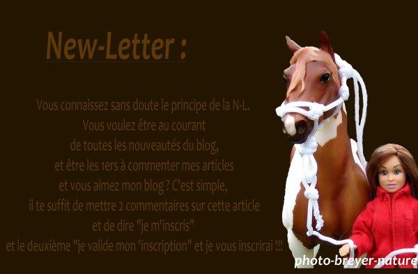 New-Letter.